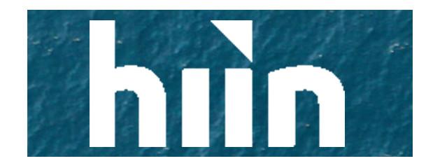 Hiin Holdings Pte Ltd